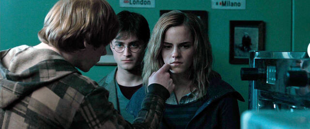 File:DH1 Ron Weasley asking Hermione to use memory charm over the stunned Death Eater.jpg