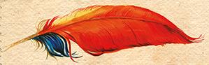 File:Phoenix feather HP2 Jim Kay.png