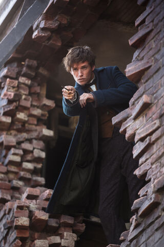 File:Fantastic Beasts Newt 02.jpg