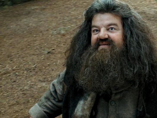 Bestand:Hagrid.jpg