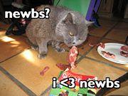 File:Bite the newbs.jpg