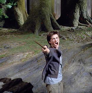 Bestand:Harrypatronus.jpg