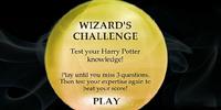 Wizard's Challenge