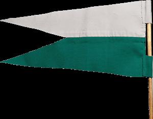 File:Slytherin™ Flag.png