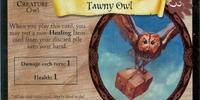 Tawny Owl (Trading Card)