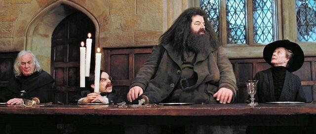 File:Harry-potter3 minerva feast.jpg