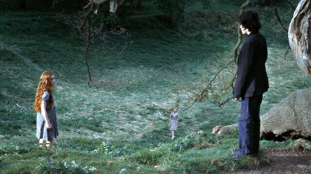 File:Harry-potter7-movie-screencaps.com-8992.jpg