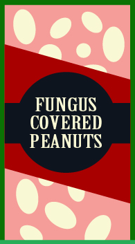 File:Fungus-Covered Peanuts.png