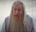 Dumbledore in KC.png