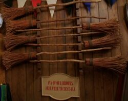 Test-Fly Brooms