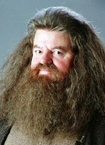 File:Rubeus Hagrid.jpg