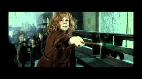 Harry Potter - Shake it Out