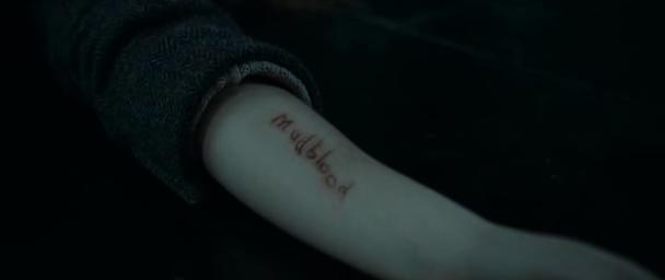File:Mudblood sliced into Hermione's arm by Bellatrix Lestrange..jpg
