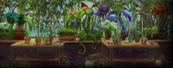 Herbology second year.png