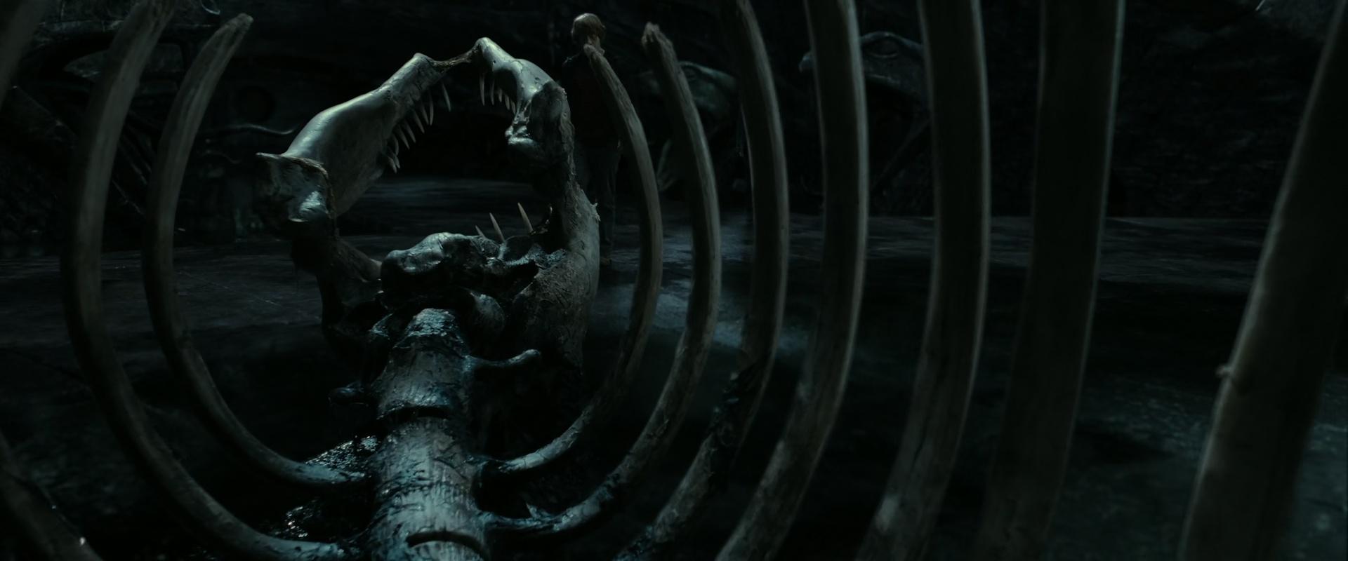 File:Basilisk skeleton.jpg