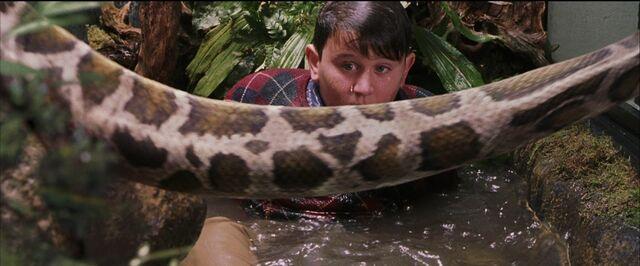 File:Harry-potter1-Dudley snake.jpg