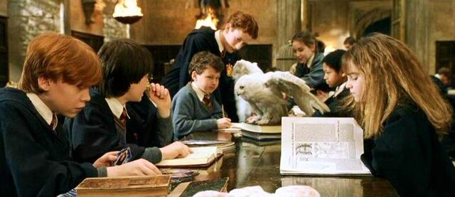 File:Hedwig at the Great Hall (1991).JPG