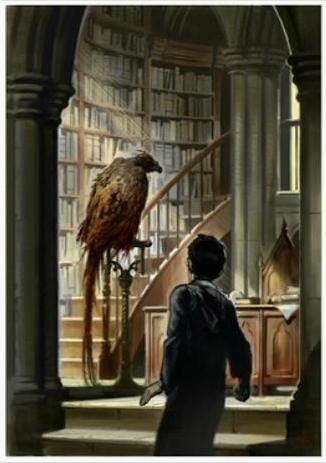 File:Fawkes the Phoenix (Concept Artwork for the HP2 movie 01).JPG