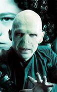 Voldemort Half-Blood Prince