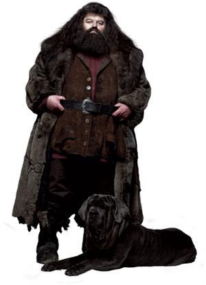 File:Hagrid and Fang.jpg