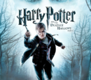 Harry Potter ja kuoleman varjelukset, osa 1 (videopeli)