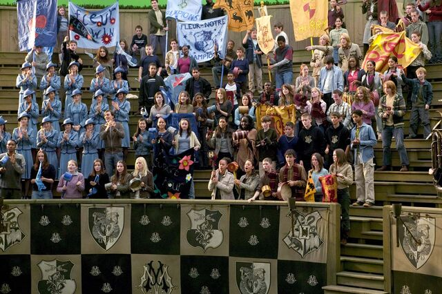 File:Audiences of the Triwizard Tournament's Third Task.jpg