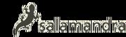 Logo salamandra