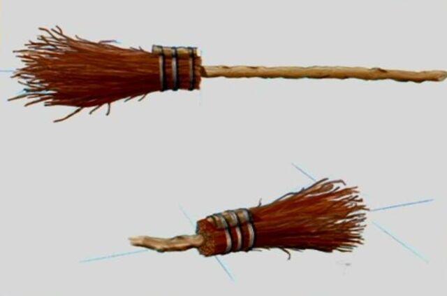 File:Broomstick (Concept Artwork) 1.JPG