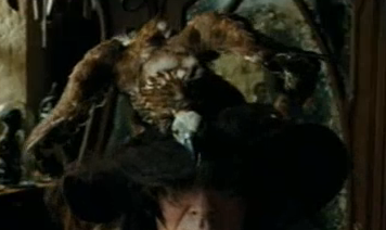 File:Augusta Longbottom's Hat.png