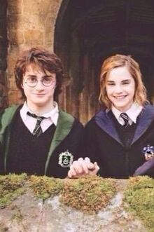 Harry and Hermione (Scopatore)