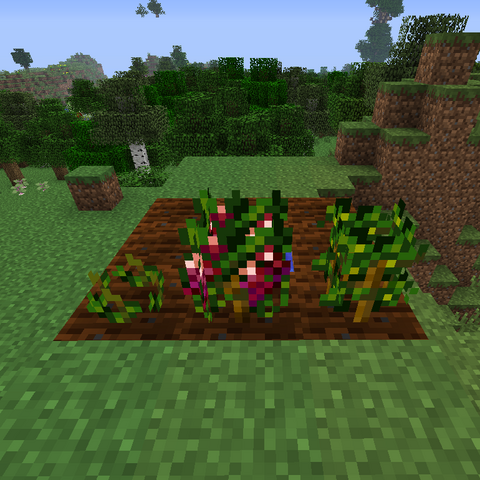File:Grape Growth.png