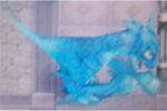 RF4 Blue Dragon
