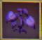 PurpleGrass
