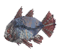 File:SkyFish.png