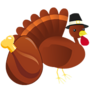 Thanksgivinghatched