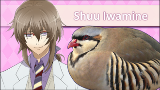 ShuuIwamineRemakeICPSS