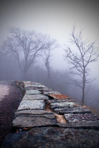 File:Foggy edge.jpg