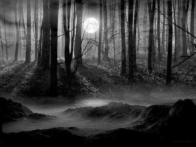 File:Creepy creek.jpg