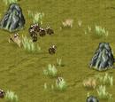 Mouflon (Муфлон)