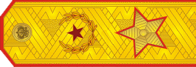 File:RUS ARMY Gen.png