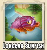 File:Longear Sunfish Photo.png