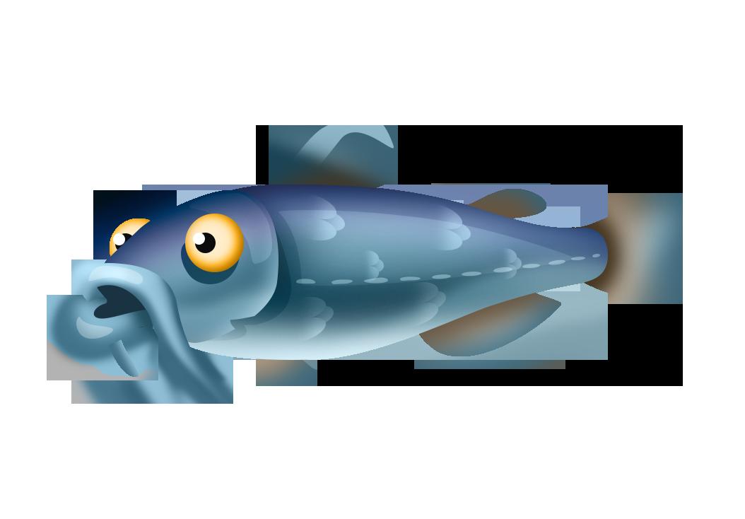 White Catfish