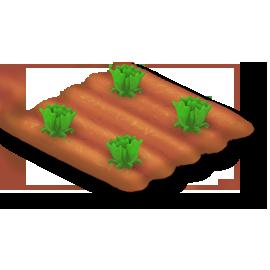 File:Lettuce Stage 2.png