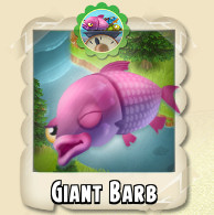 File:Giant Barb Photo.jpg