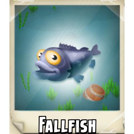 File:Fallfish Photo.png