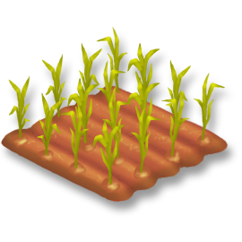 File:Corn Stage 2.png