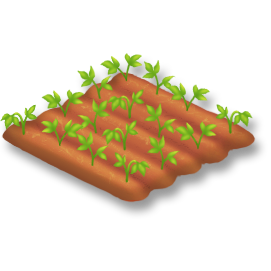 File:Soybean Stage 2.png