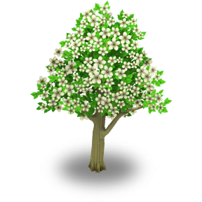 File:Apple Tree Stage 2.png