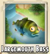 File:Largemouth Bass Photo.png