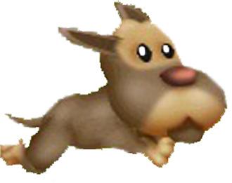 File:Pinscher Puppy Running.jpg